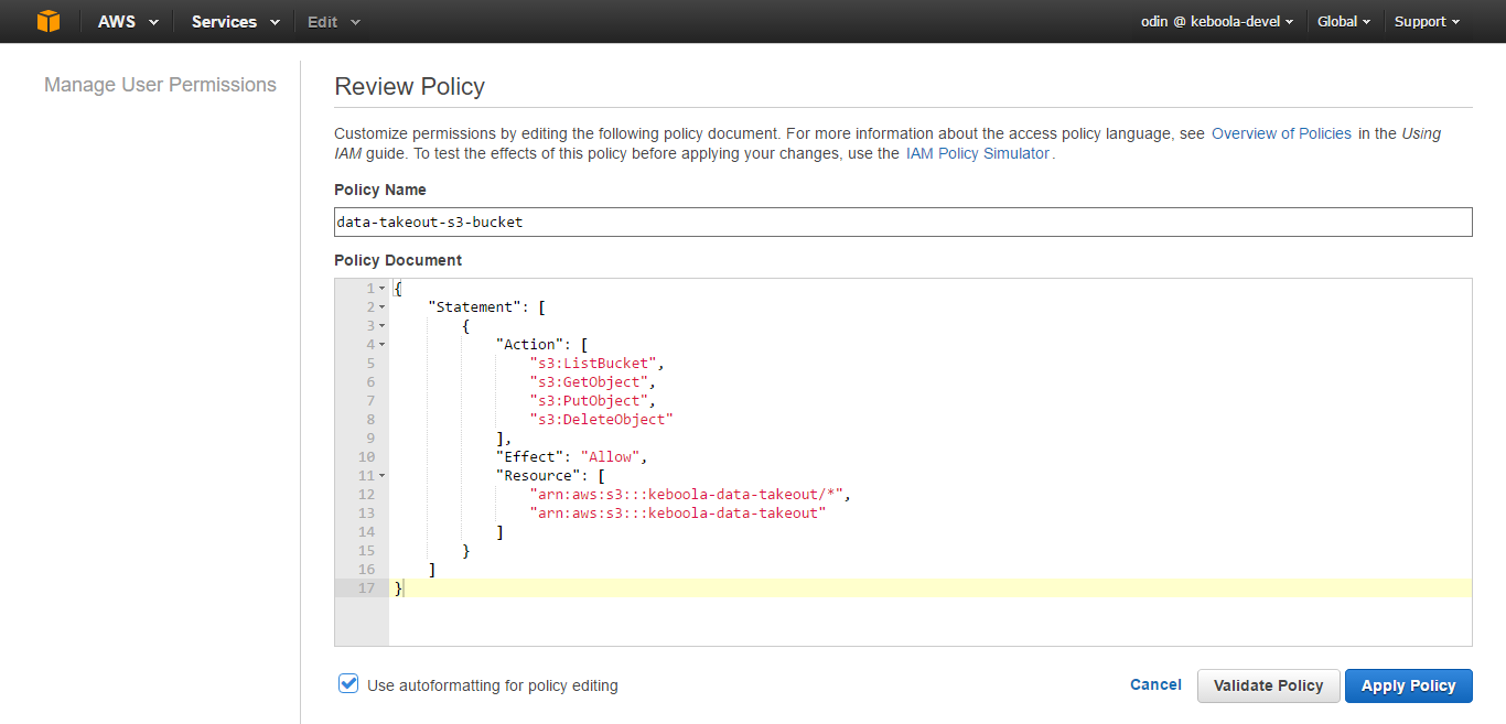 Screenshot - AWS Create Custom Policy Document